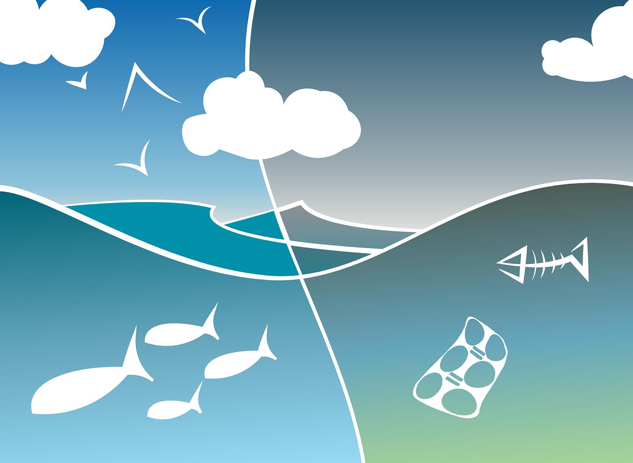 Concours créatif «Protection des océans»